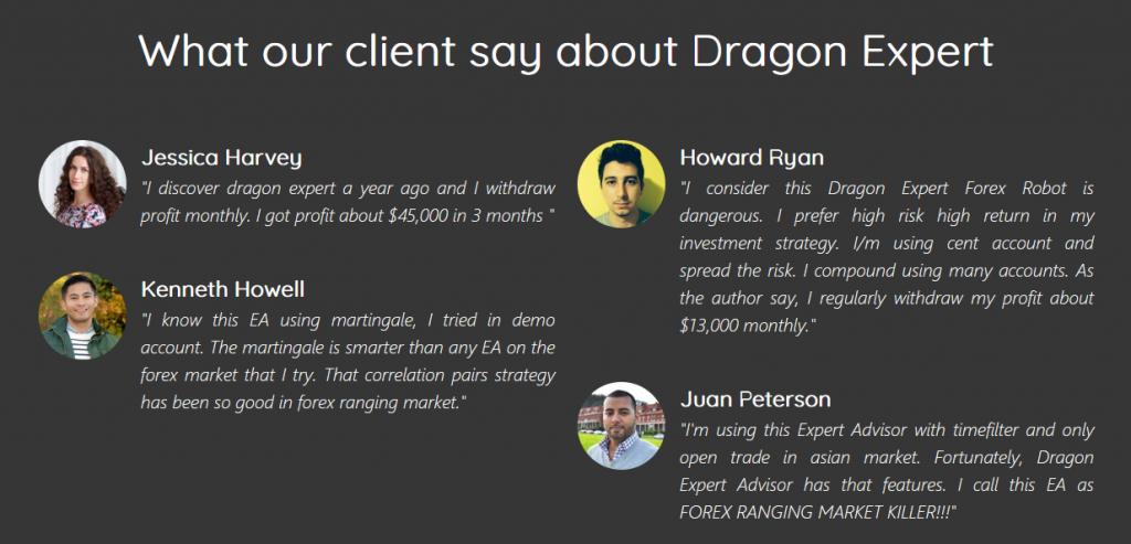 dragon expert reviews