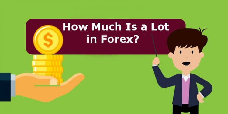 Nano, Micro, Mini, and Standard - How Much Is a Lot in Forex?