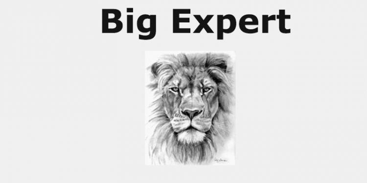 Big Expert